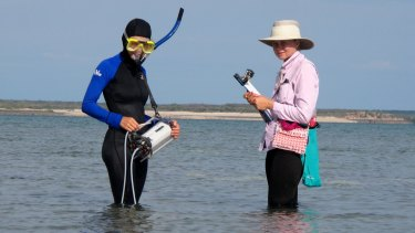 Verena Schoepf (left) and Anne-Marin Nisumaa-Comeau assess the status of bleached Kimberley corals exposed at low tide.