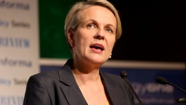 Labor's Tanya Plibersek says it was the right decision for the Gillard government to promise that no school would be worse off under the Gonski funding reforms.