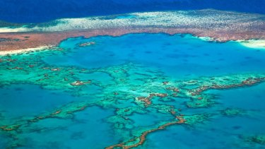 Aerial view of the Great Barrier Reef of the Whitsundays in the Coral sea.
