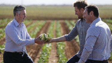 Coles MD John Durkan, chef Curtis Stone and John Said, CEO of Fresh Select, at the launch of the $50 million Coles Nurture Fund, which will provide interest-free loans and grants to food producers.