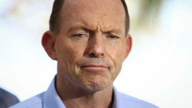 Tony Abbott has been opposed to the purchase of international carbon credits.