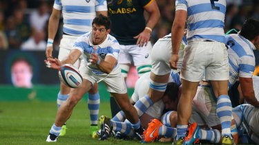 New recruit: Argentina scrumhalf Tomas Cubelli has agreed terms on a two-year deal with the Brumbies.