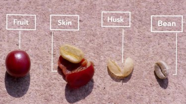 Coffee husk is an organic waste material that's produced at the milling stage of coffee production.