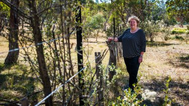 Chair of Royalla Landcare, Maryke Booth, who is currently split between Palerang and Queanbeyan, is happy with the amalgamation of the two councils.