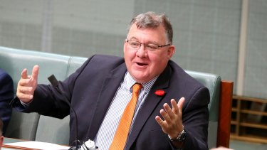 """Liberal MP Craig Kelly, who chairs the Coalition's backbench environment committee, said he already had """"the champagne on ice""""."""