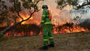 A controlled burn at Warnett on Western Port Bay.