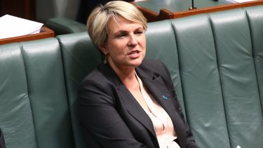 Tanya Plibersek during Question Time.