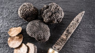 Truffles have long been the holy grail for Australian cultivators.