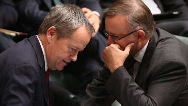 Anthony Albanese with Opposition Leader Bill Shorten in Parliament House in May.