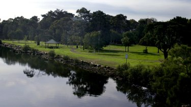 As many as 1000 trees along the Cooks River are being assessed for potential removal by energy companies.