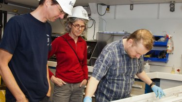 Scientists inspect cores samples taken aboard the drill ship.