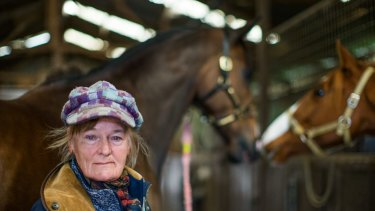 Hard graft, but what would I do without my horses, says Clarke, 70, detailing her 37 years of success in the tough racing industry.