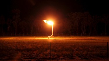 Flaring at the Narrabri gas project in the Pilliga.