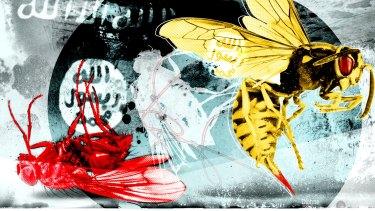 Illustration: Dionne Gain