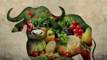 Illustration: Michael Mucci