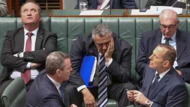 Warren Truss (rear, right) during question time on Tuesday with  Agriculture Minister Barnaby Joyce (left), Leader of the House Christopher Pyne, Treasurer Joe Hockey and Prime Minister Tony Abbott.