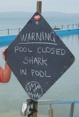 A warning sign on Palm Beach rockpool on Tuesday.