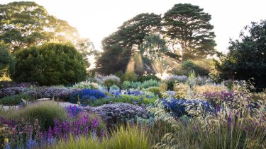 Claire Takacs' new book, Dreamscapes, features some of the world's most beautiful gardens.