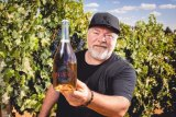 Radio personality Kyle Sandilands and girlfriend Tegan have expanded their Sangria empire.
