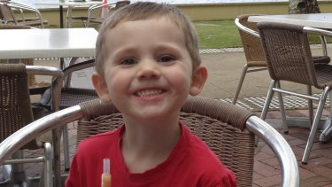 Police have been given information about 600 persons of interest in the William Tyrrell investigation.