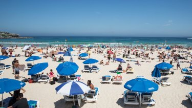 Some like it hot: NSW state records were swept away in latest heatwave.