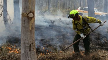 A ranger conducting controlled burns.