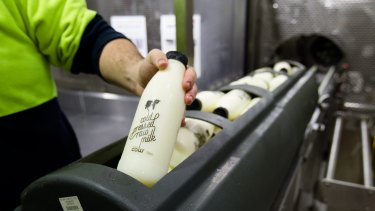 Bottles of raw milk are packed into baskets before being sent through a cold-press machine.