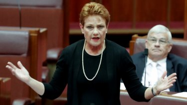 """Pauline Hanson showed her enthusiasm for Russian leader Vladimir Putin and her disdain for Muslims and the """"no jab, no pay"""" scheme on the ABC's <i>Insiders</i>."""