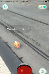 A Weedle on the tram tracks.