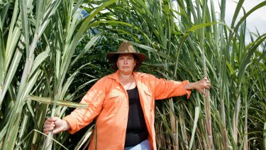 Kalamia Cane Growers director Paula Langdon on her farm near Ayr, North Queensland.