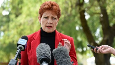 Pauline Hanson's resurgent One Nation has bagged four Senate seats.