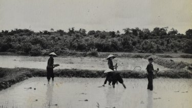 Locals working in nearby rice paddies.