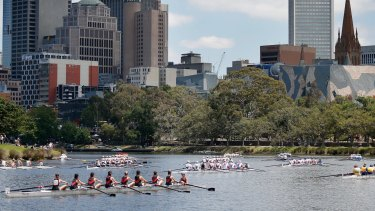Crews lining up for the start of the Yarra Head of the River rowing classic.