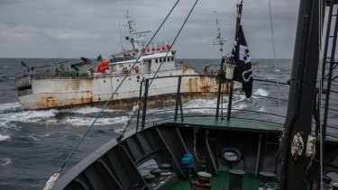 The pirate fishing boat Yongding in near collision with Sea Shepherd ship, Sam Simon.