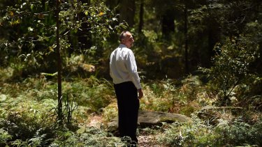 A homicide squad detective examines bushland inside a crime scene in the search for Mr Leveson's remains.