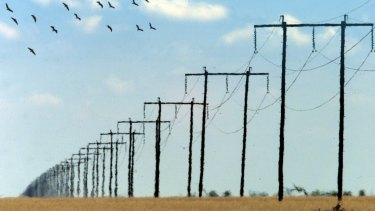 Assets for sale in the next six months are expected to include the NSW government's $20 billion lease of its electricity poles and wires, as well as LNG gas pipelines from Origin Energy and Santos.
