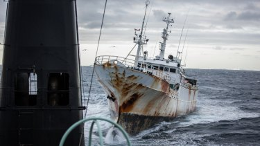 Pirate fishing boat Yongding in near collision with Sea Shepherd ship, Sam Simon.