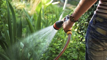 In 2001 the average Queenslander used 300 litres of water per day to wash, eat, drink and in the garden. In 2015 that figure is 169 litres per day.