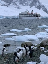 <i>Deadly Trip of a Lifetime</i> documents the ill-fated voyage of the Antarctic cruise ship Greg Mortimer.