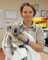 Timberwolf gets some TLC from Australia Zoo vet nurse Robyn Kriel.