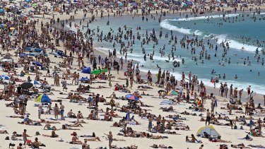 No respite in sight: All of Sydney is expected to swelter on Tuesday and Wednesday.