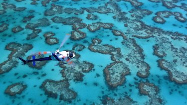 Reef risks should have been considered in new coal mine approval, green group says.
