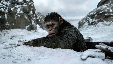 Andy Serkis as ape leader Caesar.