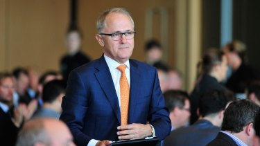 Communications Minister Malcolm Turnbull in Adelaide on Wednesday.