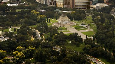 The trees on St Kilda Road near the Shrine of Remembrance could be cut down.