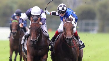 Jockey Craig Williams rides Big Duke to win The N E Manion Cup at at Rosehill Gardens racecourse.