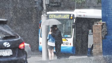 Umbrellas cause havoc with Sydney's buses.