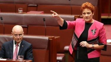 "Senator Pauline Hanson benefited from a surge in popularity but the United Nations has warned against ""normalising"" her views."