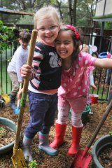 Preschool teaches environmental awareness: (Left to right) Aurelia Currall and Gianna Muscat working in the vegetable garden.