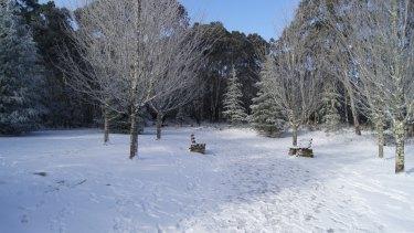 Snow at Mount Macedon at 10am on July 13.